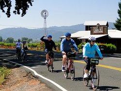 Sonoma Valley Bike Tours & Rentals