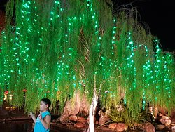 tree with green LED light decoration