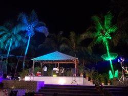 Music Oasis at gala night