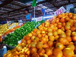 Terminal Agropecuario Arica
