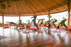 El Morén, the movement & yoga shala