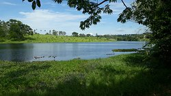 Palmeiras Lake