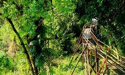 Cat Tien Park
