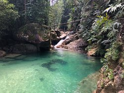 Lata Payung Nature Walk  Join Jenoba Outdoor on a Guided Nature Walk on the scenic trail of  Lata Payung.  • Learn the local history of where Lata Payung got its name.  • Learn about the plants that available along the trail. • If you are lucky, meet the local animals that roam freely along the trail. • Enjoy the refreshing and clear water of Blue Pool, an amazing small waterfall at the end of the trail. • Taste the local food such as Nasi Kerabu  Contact +60137026923 to join