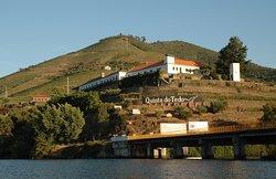 Vai uma degustação de Vinho do Porto?