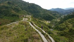 Banaue Rice Terrace View Point