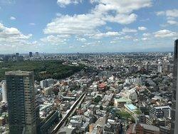 东京的四天三夜