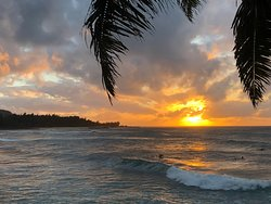 The Best of the North Shore