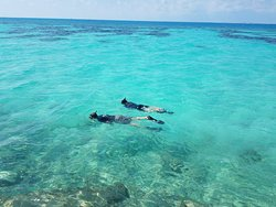 Snorkeling was great on my 3rd day there, but not the best the first 2. Water was great in February.