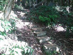 Rustic steps at top of hill.