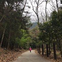 Wuling Taoshan Waterfall