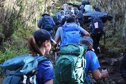 Join Charity  rek Kilimanjaro Climb for Cancer October 22 2019 with Kilimanjaro Brothers