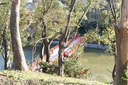 茶臼山方面から見た河底池の和気橋