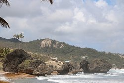 Bathsheba Beach 8