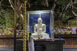 Buddha statue by the Bo tree
