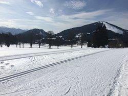 Ski track at Ramsau am Dachstein