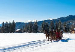 ‪Mountain Springs Lodge Sleigh Rides‬