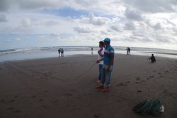 Netting of fishes at the beach