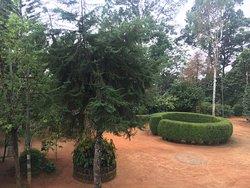 Cinnamon Gardens Spices Plantation