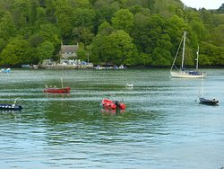 View across the Dart from Cafe.