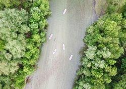 RiverSide Paddle