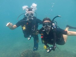 Diving with Montalay Dive Center
