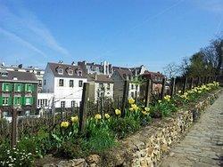 Montmartre Site