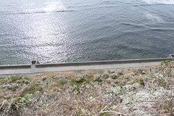 高さ20メートルぐらいの崖の上なんで景色が素晴らしいです。とても静かな場所で波と風の音ぐらいしか聞こえないです。