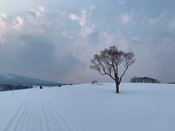 White Isle Niseko