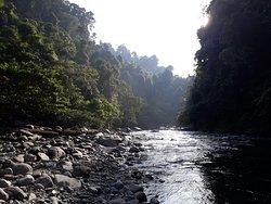 Bukit Lawang Jungle Trekking - Bukit Lawang Gateway