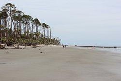 Hunting Island Beach at Hunting Island State Park.