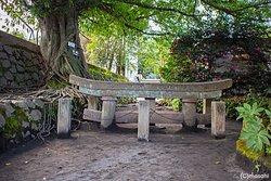 Buried Shrine Gate