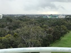 101 step Tower climb in Kings Park