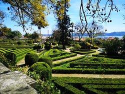 Jardim Botanico d'Ajuda