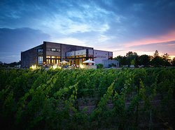 Stratus Vineyards