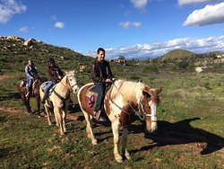 We have a draft horse that can carry a large rider up to  270lbs