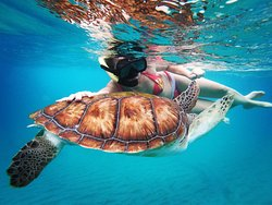 Breezing Watersports Barbados Snorkeling Tours