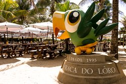 Lôro - Praia do Flamengo