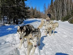 Expedition Mi-Loup Dog Sledding