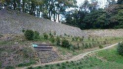 現存天守のあるお城。日本100名城にふさわしい、城郭がよく残っています。