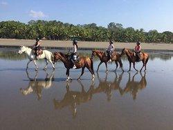 CR Beach Barn