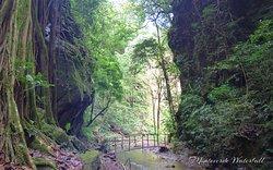 Catarata Los Murciélagos / Monteverde Waterfall Monteverde, Puntarenas, Costa Rica