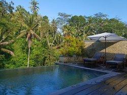 Oasis in Ubud