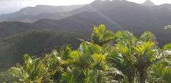 Mount Britton Trail