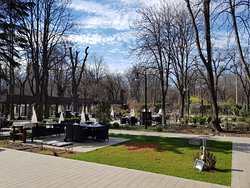 Getting ready for spring and sun. Join us for a lunch in the garden.