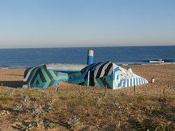 Beach of Tarnos