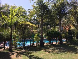A green oasis in the hearth of Rishikesh !