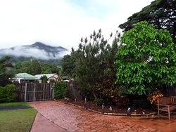 This is what you will see from inside my property, not only the gorgeous view of Mt Peter hidden by wisps of cloud but the beautiful rain trees next door, which host the many peacocks from Sugar World.