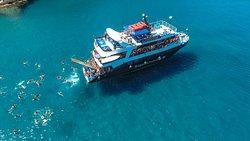 Rizos Cruises