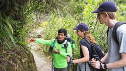 our guide Daniel explains the flower of special species in Peru
